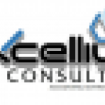 Business Manager at Excellium Consulting Services