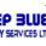 Job Vacancies at Deep Blue Energy Services Limited (DBESL)